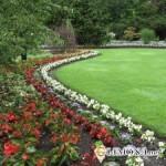 Ландшафтный дизайн - газоны и цветники