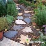 Правила прокладки садовых дорожек