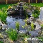 Ручей на садовом участке