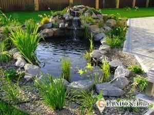 Садовые водоёмы