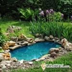 Идеи для оформления водоема на даче