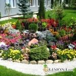 Альпийская горка – маленькое чудо в Вашем саду!