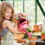 Что можно и что не следует ставить из комнатных растений в детской комнате?