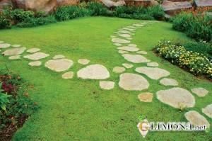 садовые-дорожки1