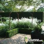 Особенности создания Белого сада