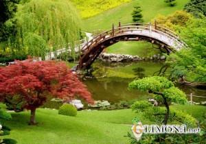 японский-сад