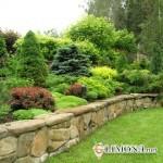 Весенние работы по защите сада
