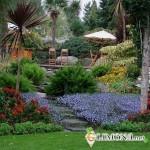 Как выполнить сад в экзотическом стиле