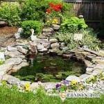 Уход за искусственным прудом в саду