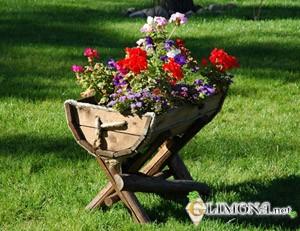 1364717914_klumby-i-cvetniki