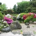 Как украсить свой сад