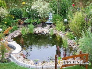 pond_decoration_area_3