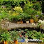 Как создать пруд у себя во дворе