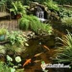 Водяной прудик как часть ландшафтного интерьера