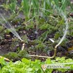 Насос водяной мощный