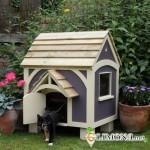 Жилище для кошки на даче