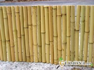 prostoy-bambukovyy-zabor