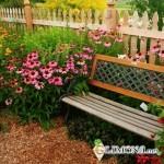 Самостоятельный дизайн сада