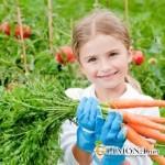Полезны ли ребёнку зелёные растения в квартире?
