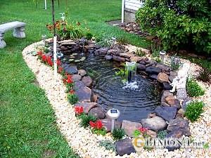 Садовый аквариум