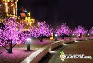 decorative_street_lighting