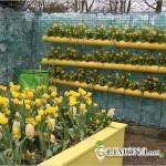 Оригинальная идея для сада – вертикальная клумба