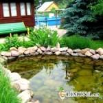 Декоративный водоем на приусадебном участке: особенности выбора местоположения пруда и его формы