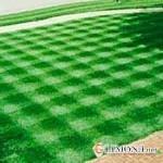 Виды газонов в ландшафтном дизайне