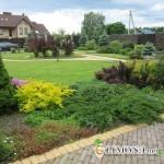 Озеленение двора частного дома: правила и советы.