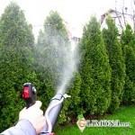 Опрыскивание растений и оборудование