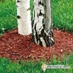 Мульча и её влияние на почву