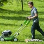 Чем лучше косить траву на даче?